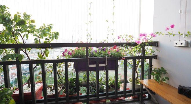 Xu hướng tạo không gian xanh cho ban công chung cư tại Hà Nội